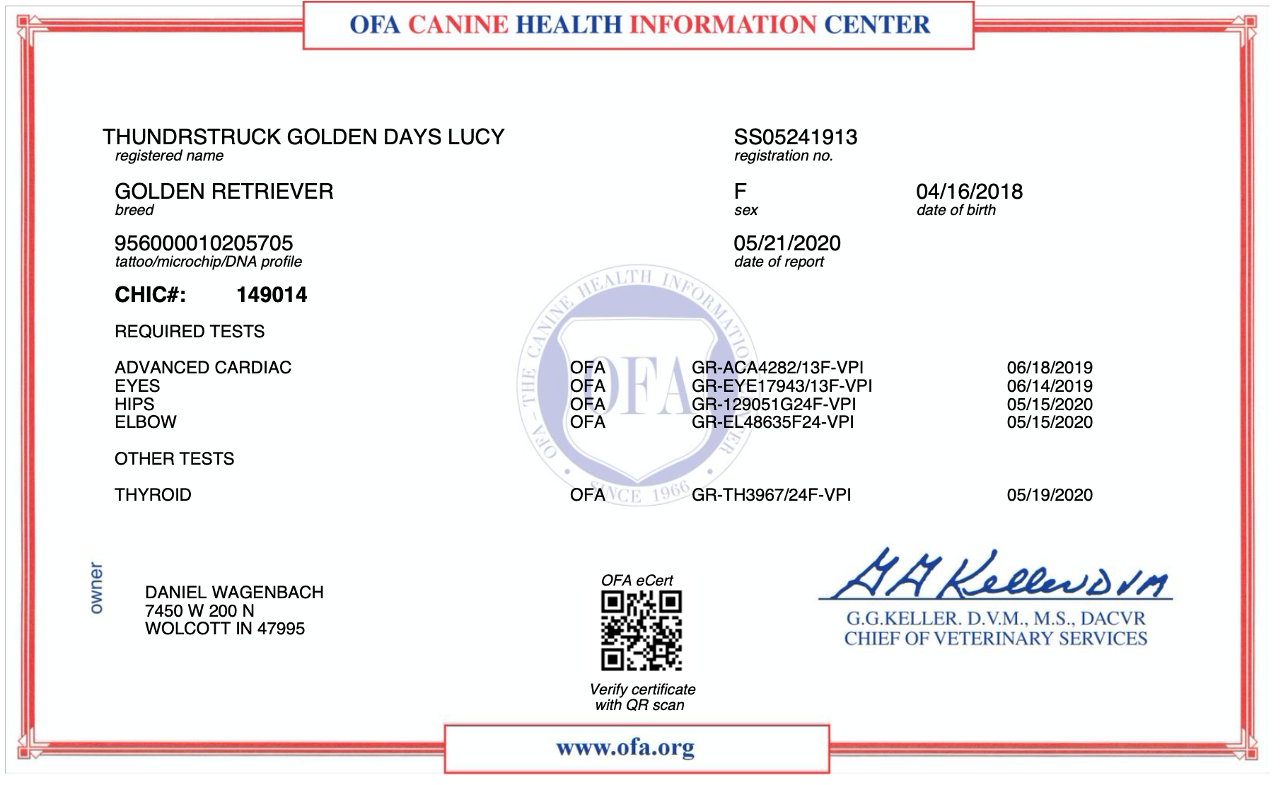 Lucy's CHIC Certificate